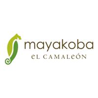 El Camaleon Mayakoba Golf Club